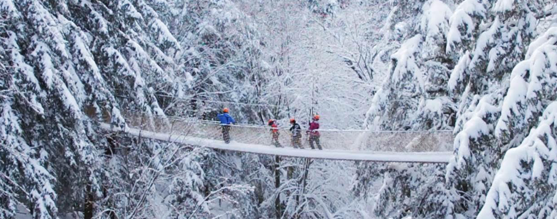 Winter Zipline Canopy Tour
