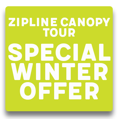 Zipline Canopy Tour - Special Winter Offer